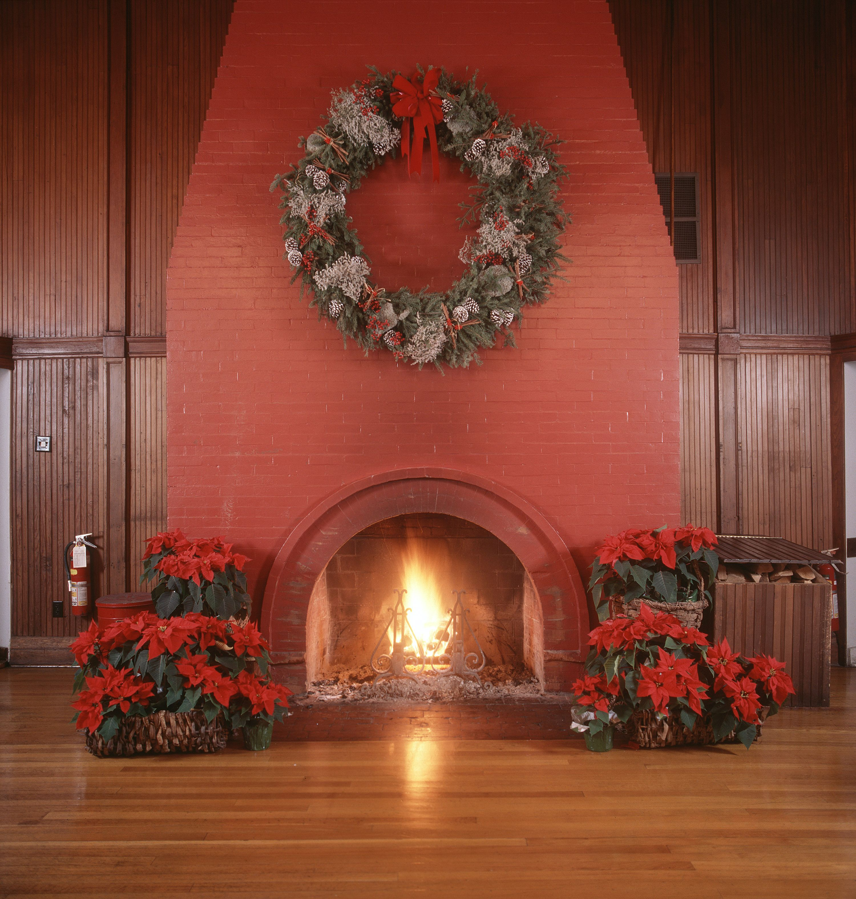 fireplace.nograte